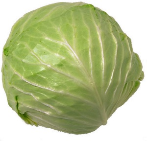 cabbage5
